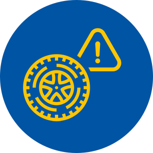 Recall Information Icon